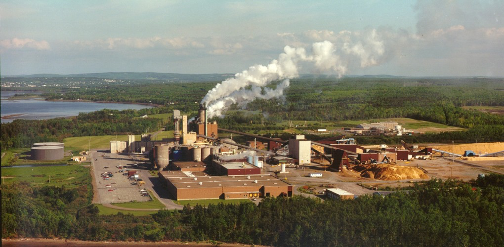 Northern Pulp Creditor Protection