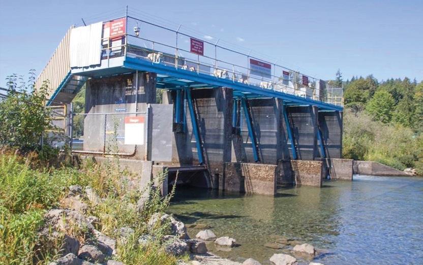 Cowichan River Management