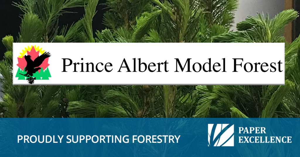 Prince Albert Model Forest Donation by Paper Excellence